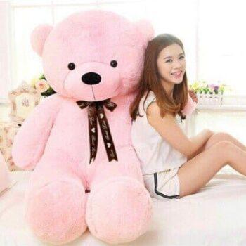 Cute Giant Teddy Bear 2